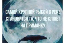 Самой крупной рыбой становится та, что не клюет на приманку